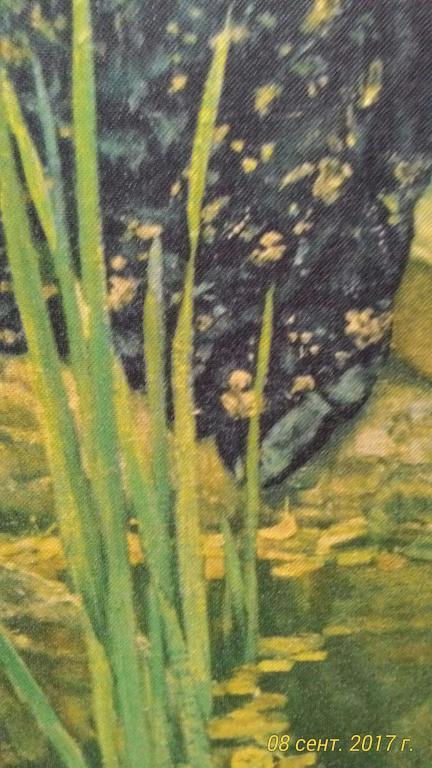 Репродукция картины Васницова - Аленушка