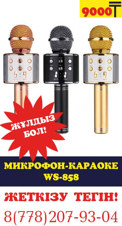 Лучший подарок! Микрофон караоке WS-858!