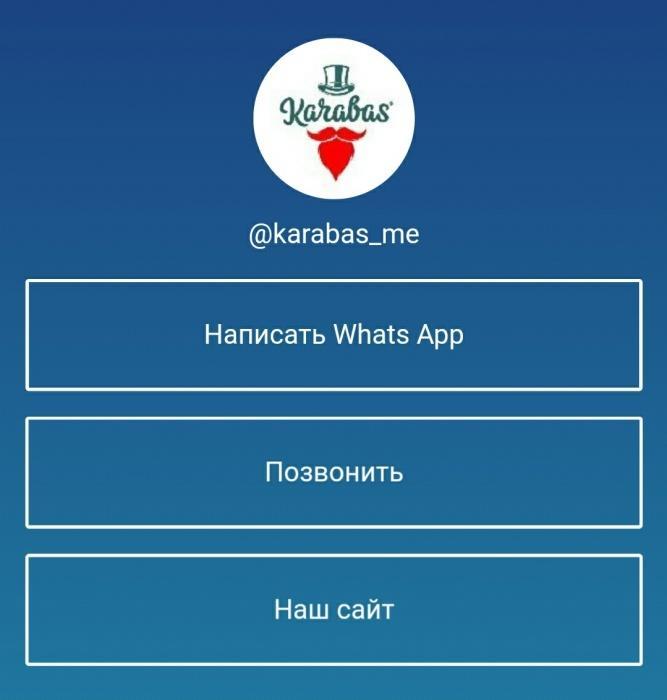 Франшиза по Инстаграм лендингам с активными ссылками