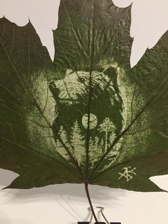 Гравюры на листьев клена!