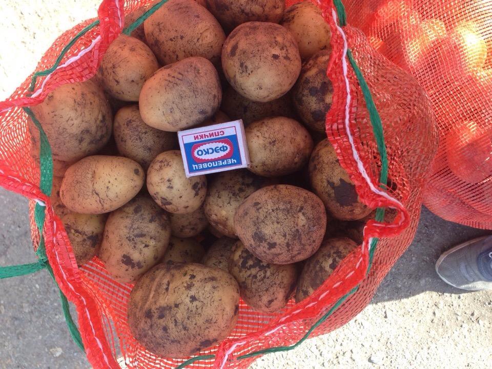 Картошка урожая 2018 года