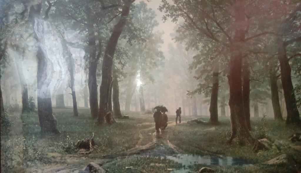 прогулка в лесу пот дождем