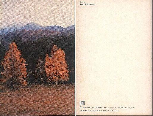 1985 - Осень