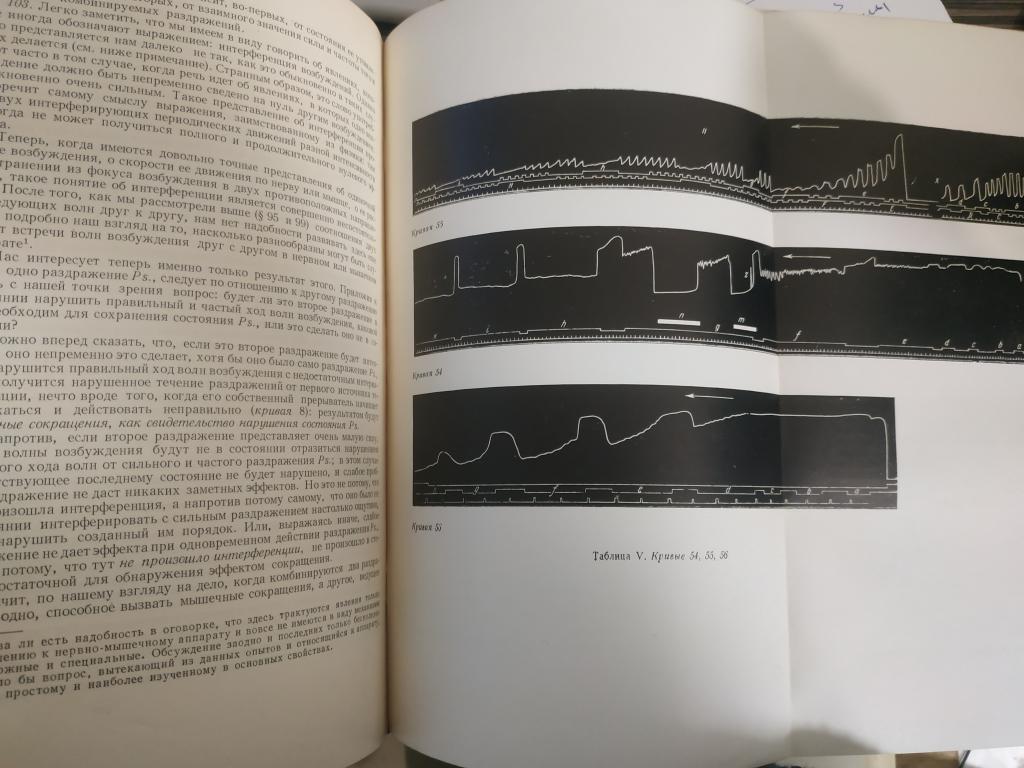 Физиология нервной системы. Избранные труды. Вып. 2
