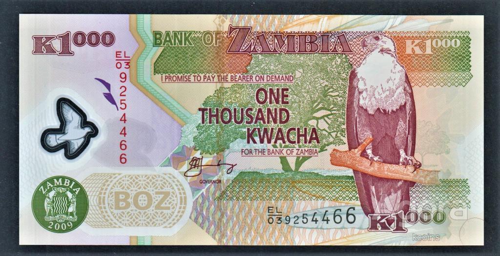 Замбия 1000 квача 2009 год полимер.