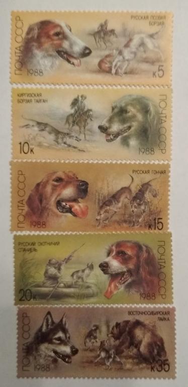 Марки. СССР 1988 г. Охотничьи собаки.